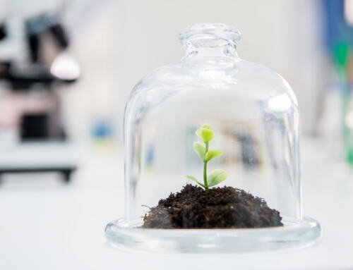 Biotecland é selecionada para processo de internacionalização para o Chile